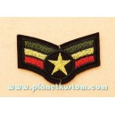 Patch ecusson thermocollant army sergent chef rasta roots
